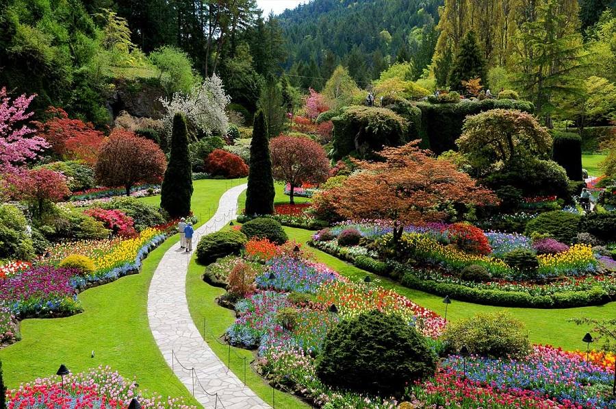 Butchad Gardens