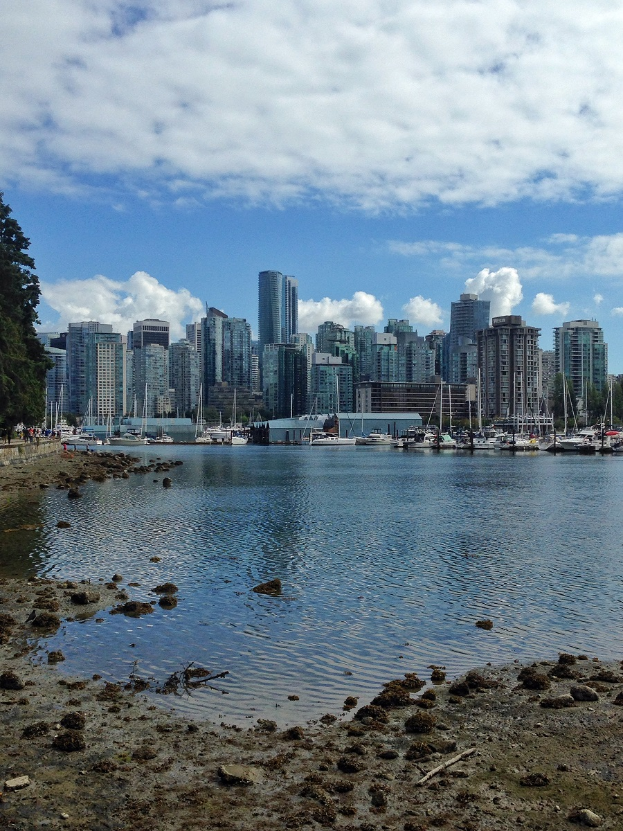 picture of vancouver city buildings from the seawall