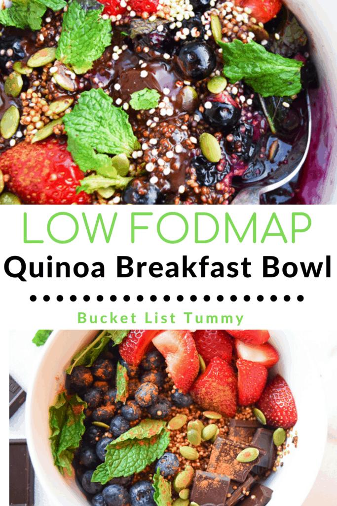 Chocolate Mint Quinoa Breakfast Bowl, Low FODMAp Recipe with text overlay | Bucket List Tummy