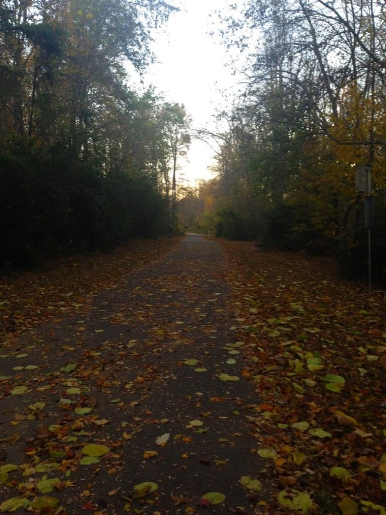Running path covered with fall leaves | Bucket List Tummy