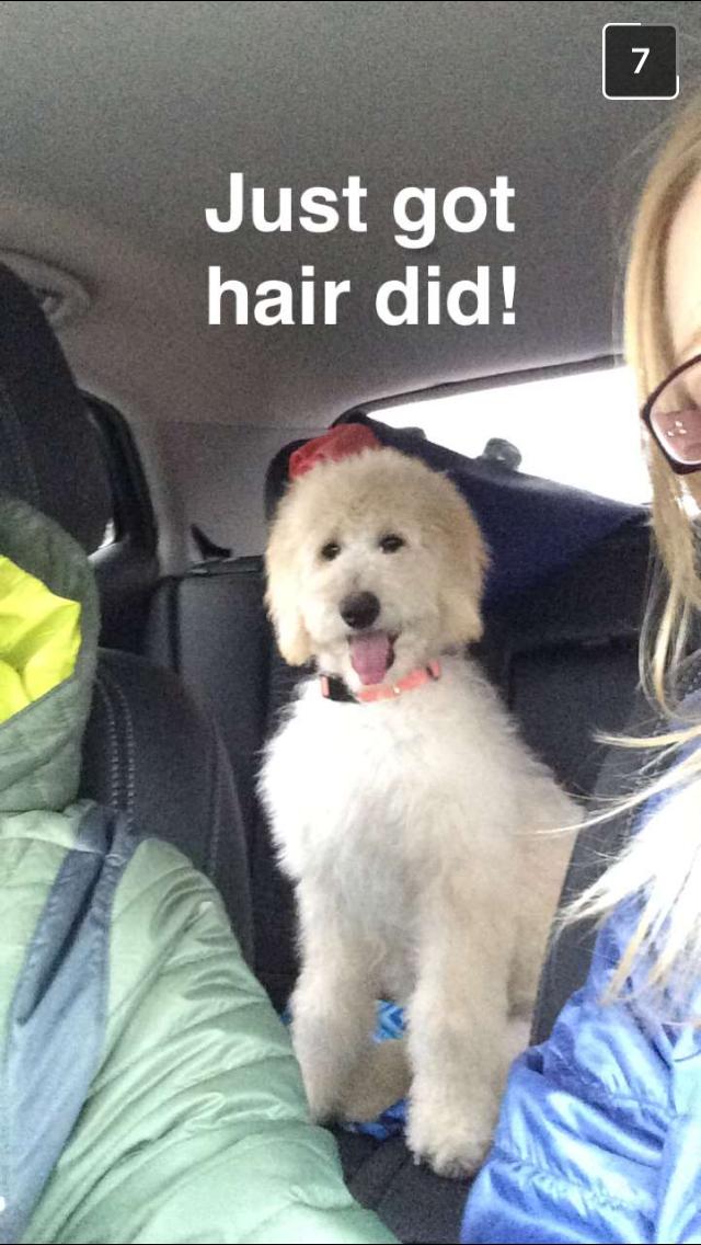 Tater haircut