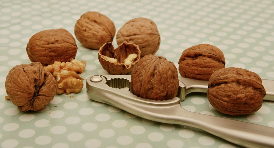 walnuts, nut allergy
