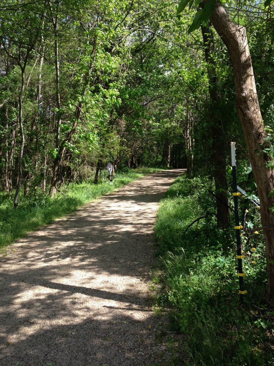 Davidson trails