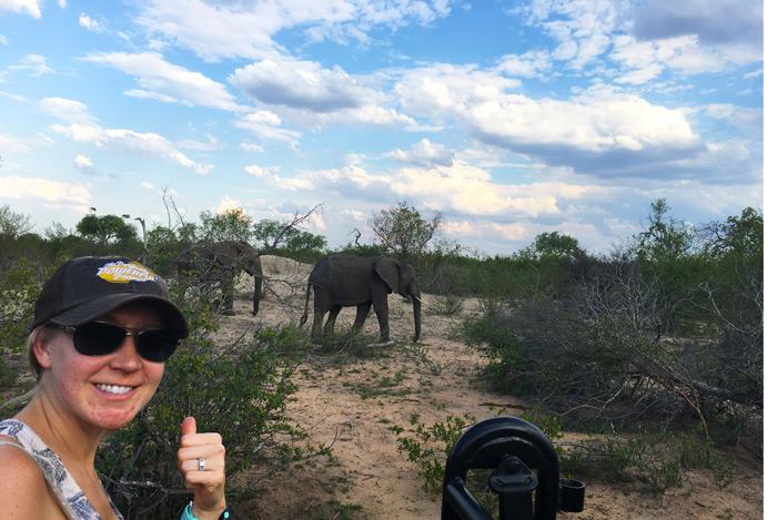 South African Safari Recap