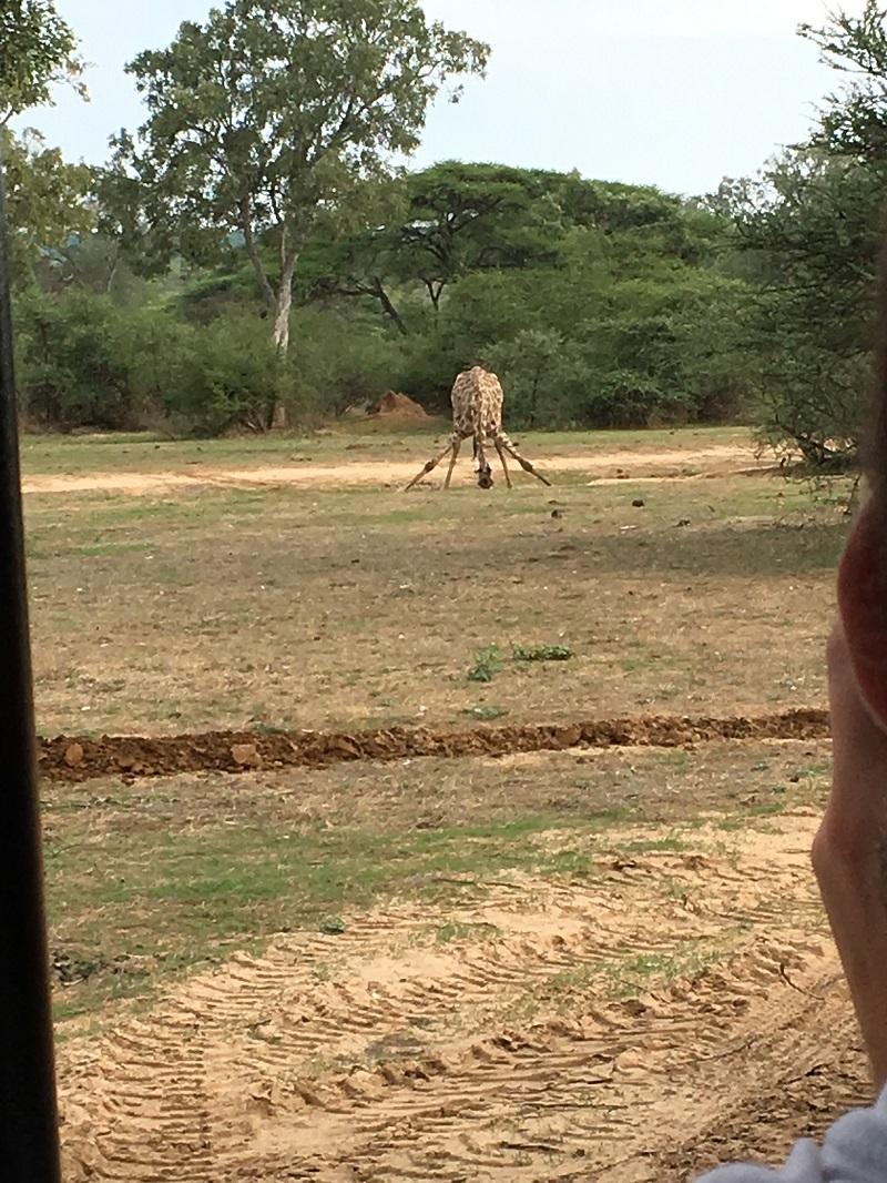 Exploring Zimbabwe