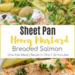 Sheet Pan Honey Mustard Salmon with text overlay | Bucket List Tummy