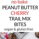 Graphic for no bake Peanut Butter Cherry Trail Mix Bites