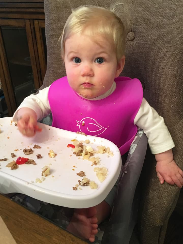 baby led weaning and introducing solids