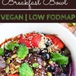 Quinoa Berry Breakfast bowl closeup in white bowl, a low fodmap breakfast recipe with text overlay