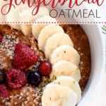 Gingerbread Oatmeal with Text Overlay