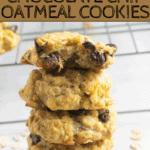 coconut flour oatmeal cookies | bucket list tummy