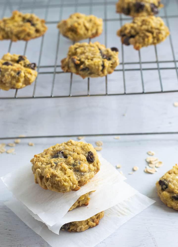 Closeup of coconut flour oatmeal cookies with chocolate chips | www.bucketlisttummy.com
