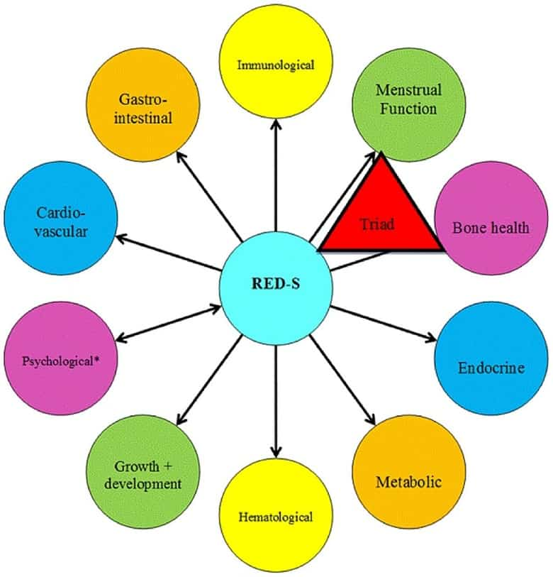 a visual representation of how RED-S can affect many systems within an athelete