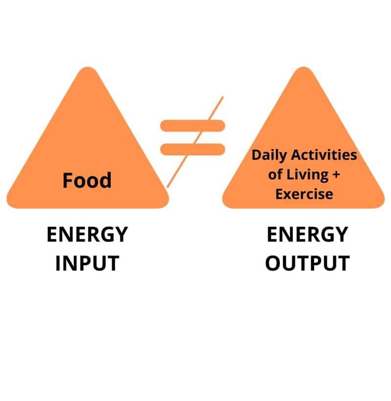 Energy input is not equal to energy output | www.bucketlittummy.com