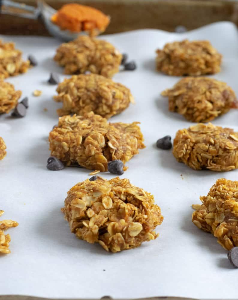 no bake oatmeal pumpkin cookies on baking sheet