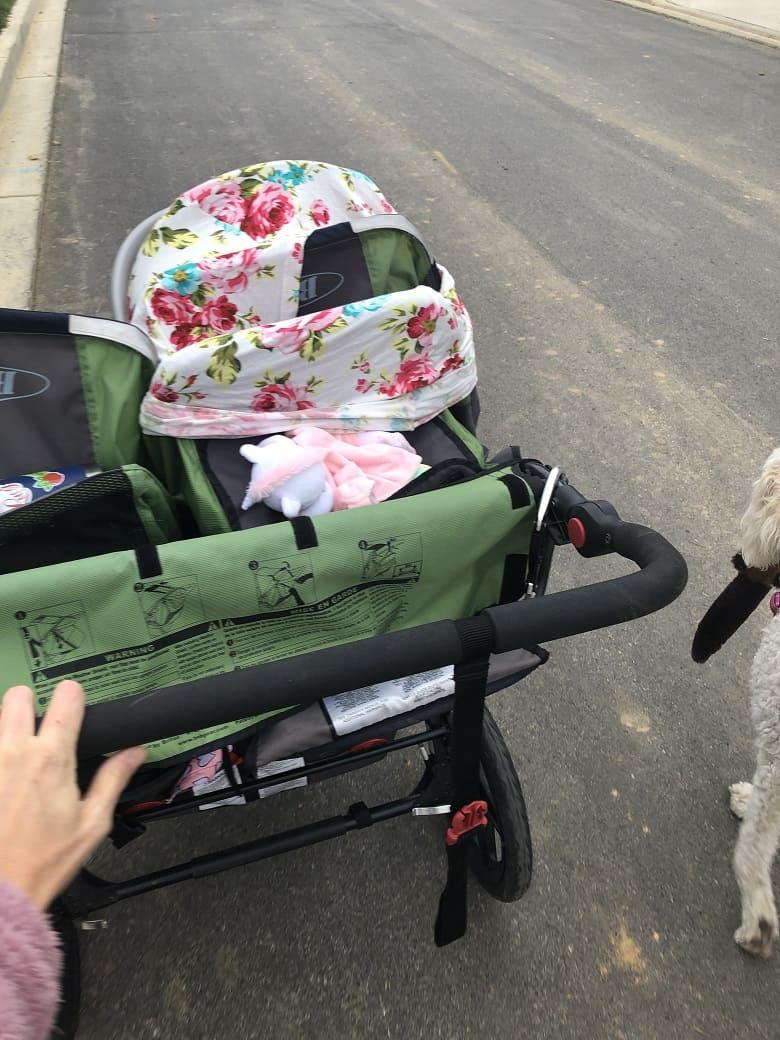 green bob double running stroller